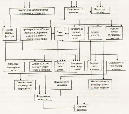 Сетка причинности для инфаркта миокарда